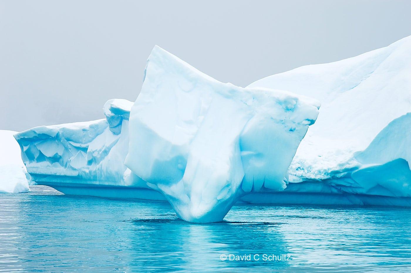Iceberg in Antarctica - Image #167-388