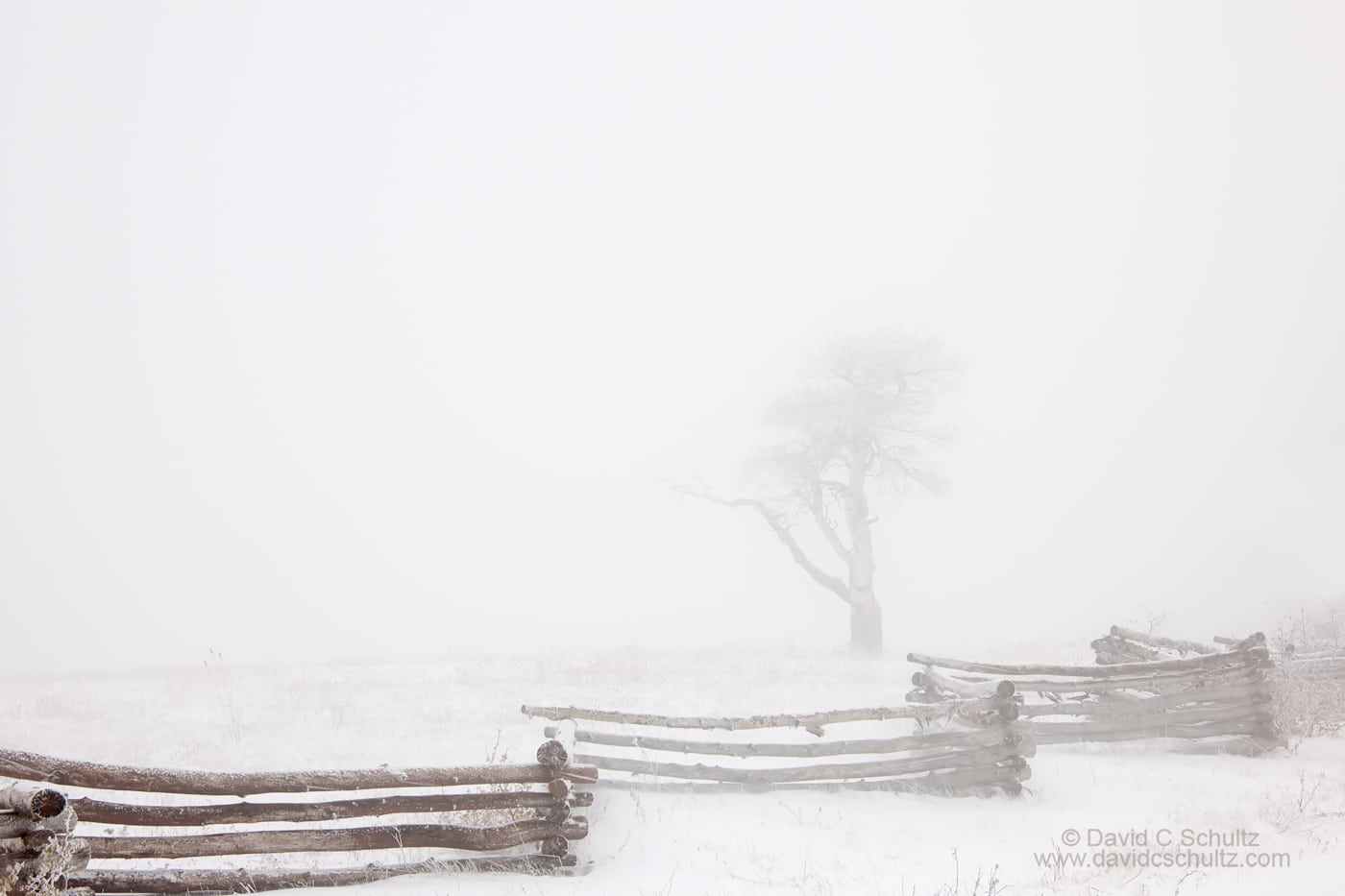 Dixie National Forest and snow in Utah - Image #3-8251