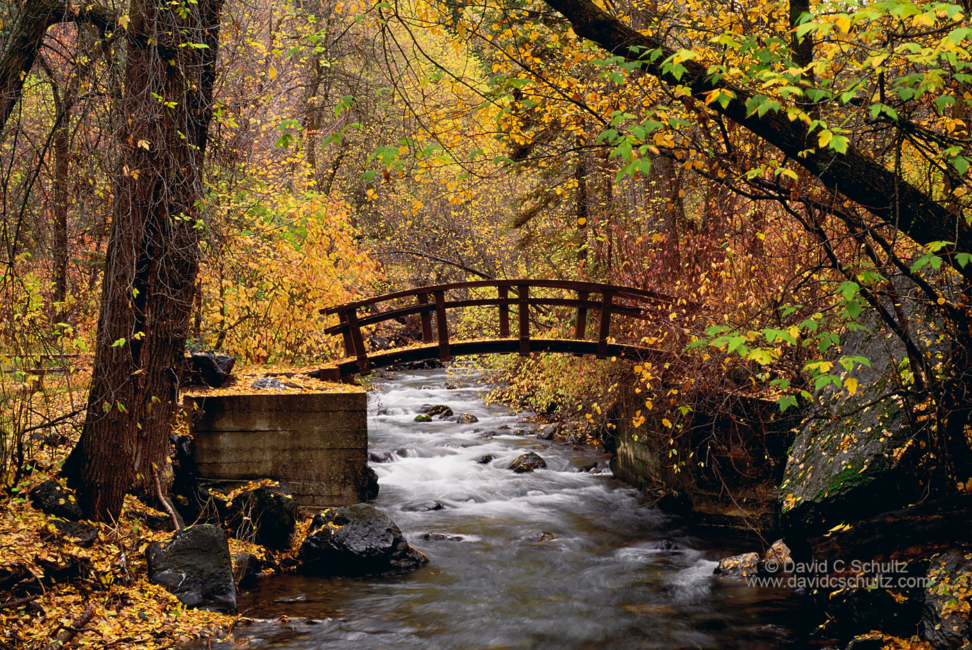 Autumn in the Wasatch Mountains, Utah - Image #3-870