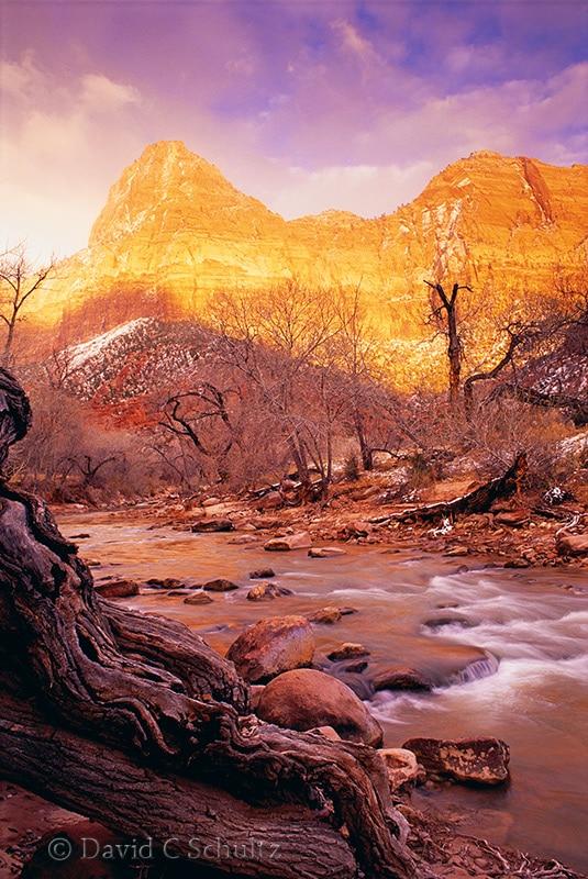 Zion National Park, Utah - Image #107-393