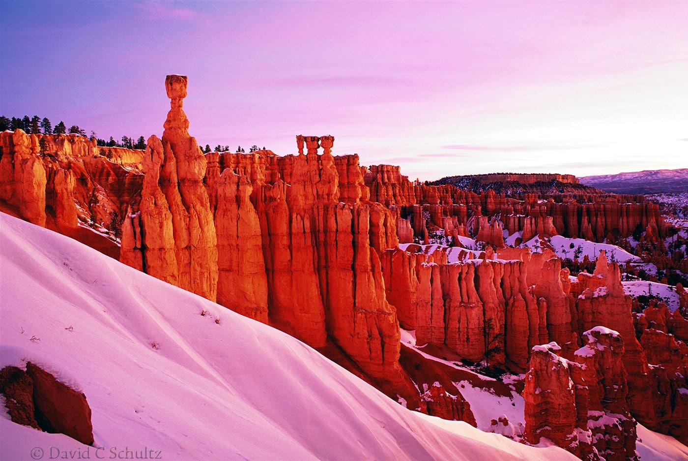 Winter in Bryce National Park, Utah - Image #15-453