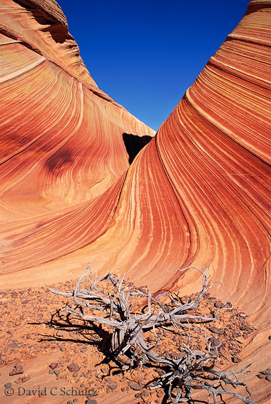 The Wave, Paria Wilderness Area, Arizona - Image #33-2019-the-wave-paria-vermilion-cliffs.jpg