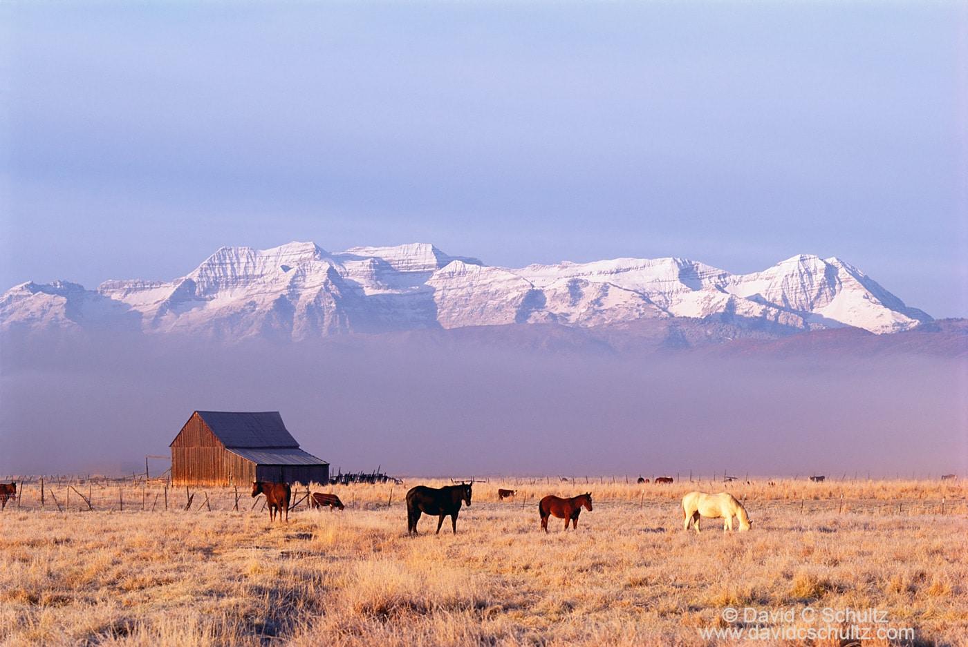 Heber Valley Utah- Image #68-1386