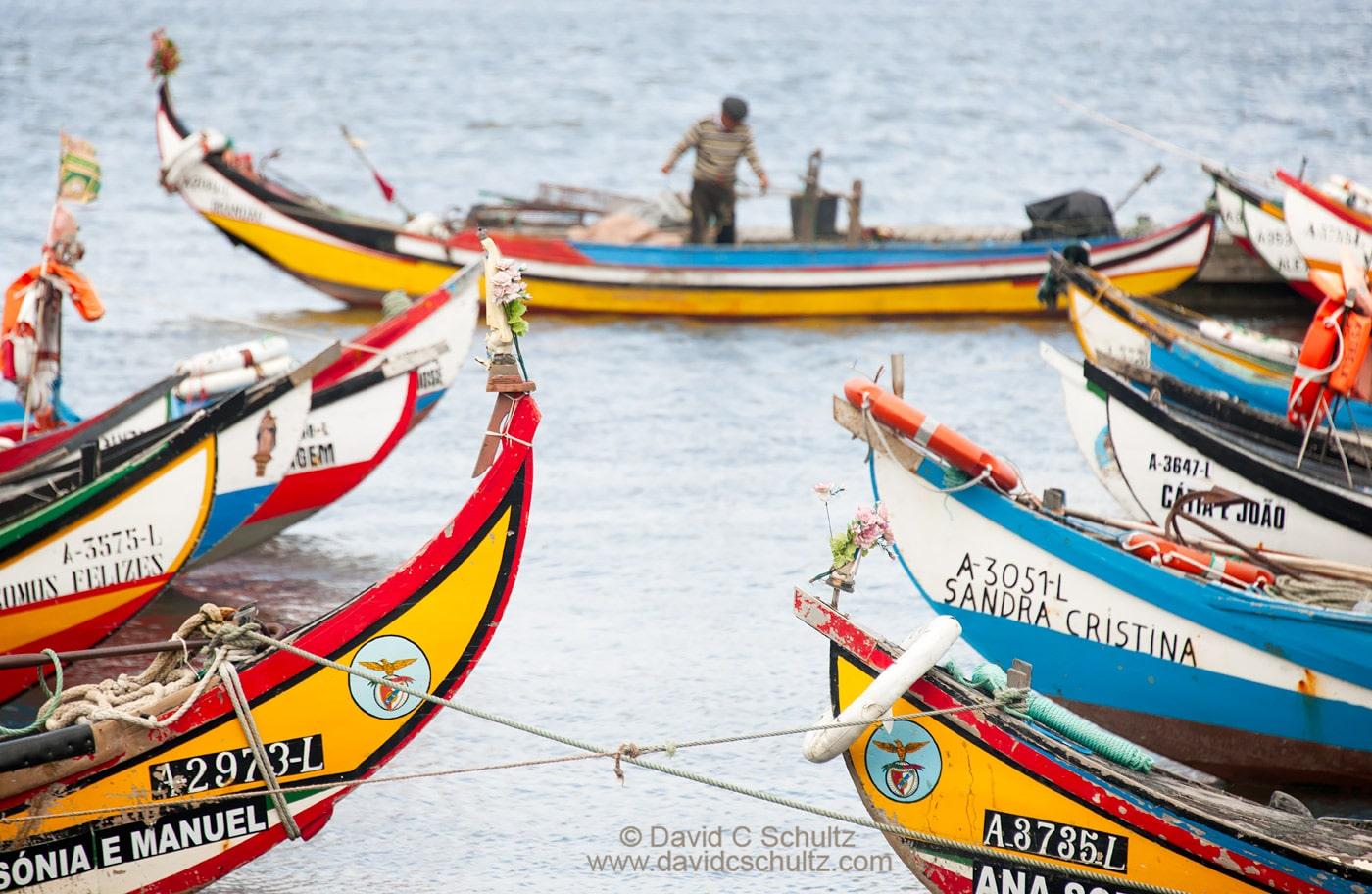 Moliceiro fishing boats Portugal - Image #16-979