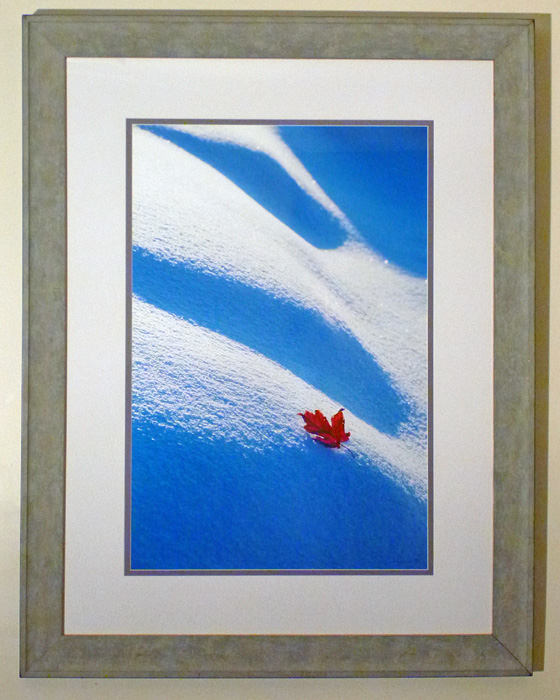 "#4 Maple leaf on snow drift, 44x34"" with frame"