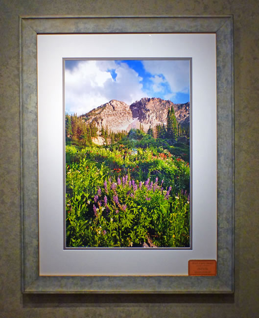 "#8 Albion Basin, Utah with wildflowers 44x34"" with frame"