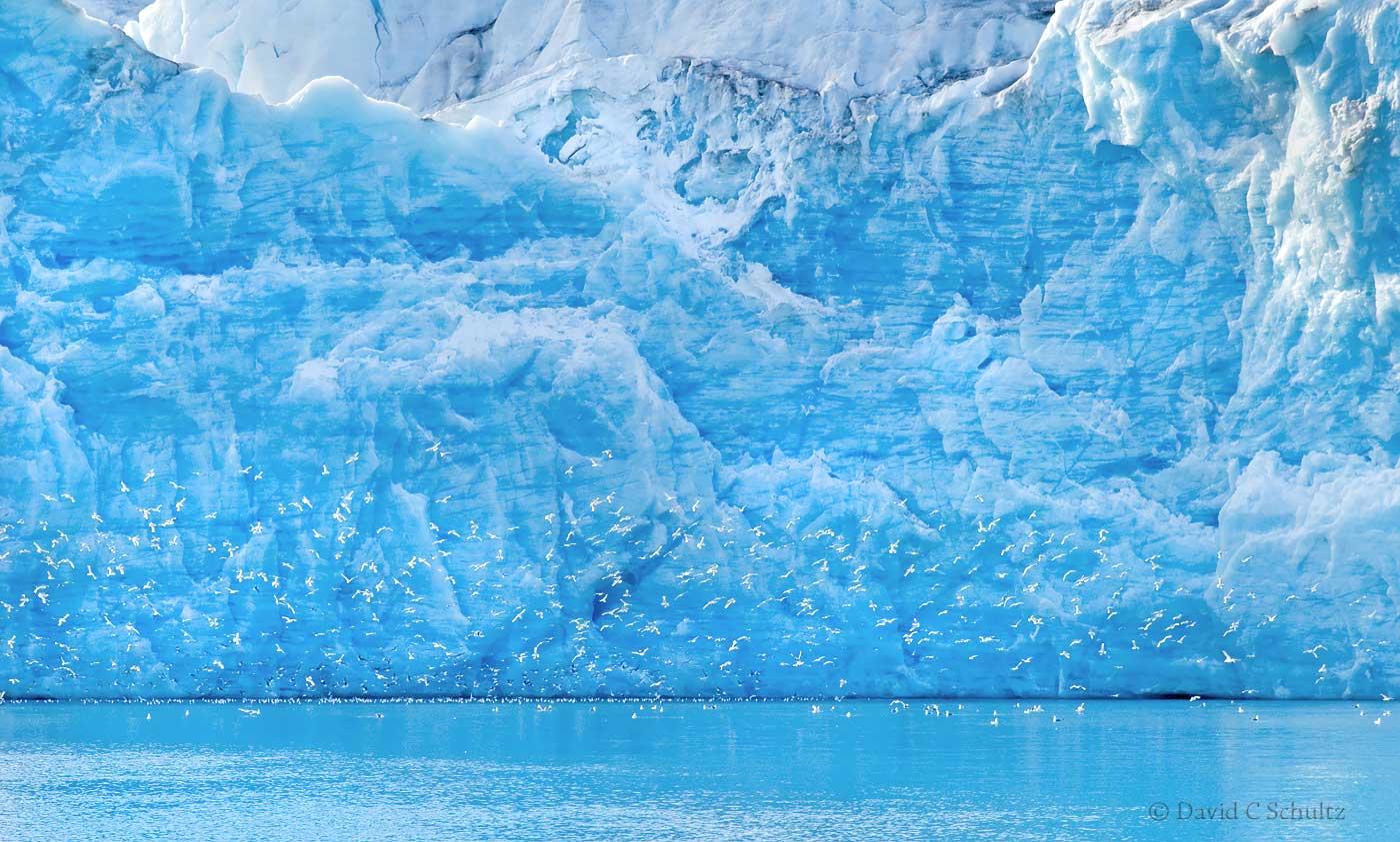 Glacier, Svalbard Norway - Image #167-1677b