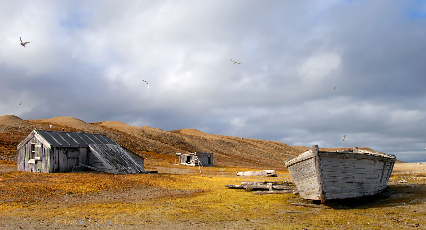 Fishing village in Svalbard, Norway - Image #16-531