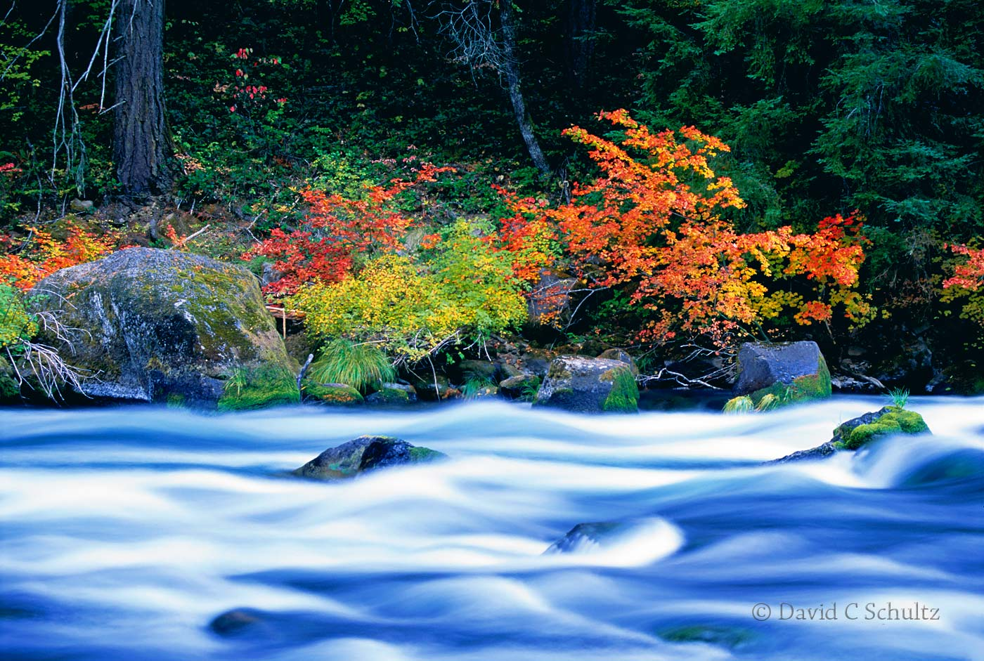 North Umpqua River, Oregon - Image #3-2363