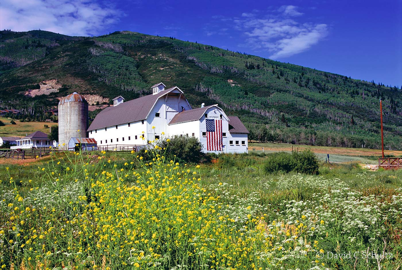 Summer at the McPolin Barn in Park City, UT - Image #13-1554