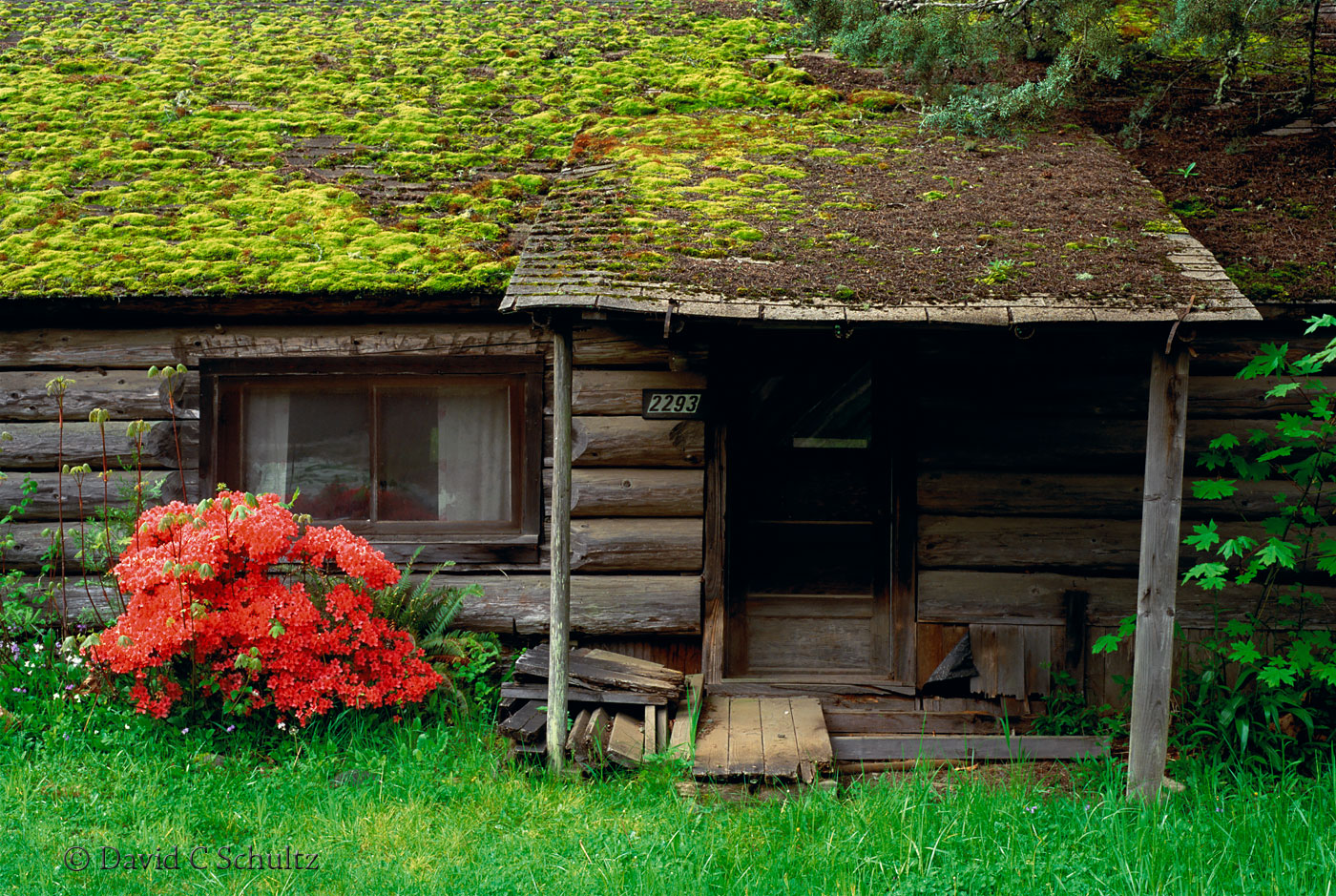 Log cabin along the North Umpqua River, OR - Image #129-29