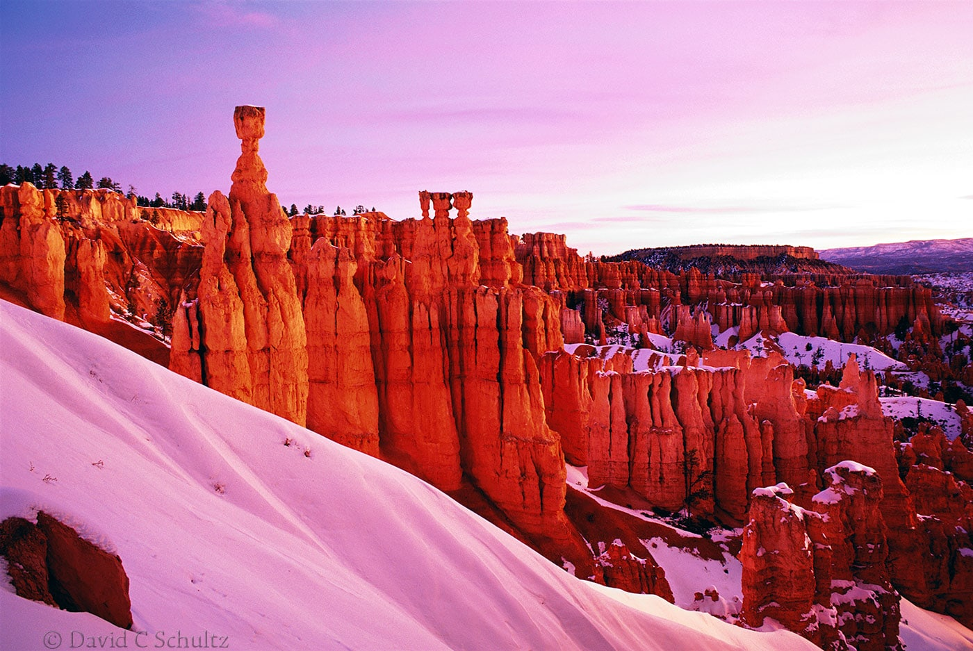 Winter in Bryce National Park, Utah - Image #15-453