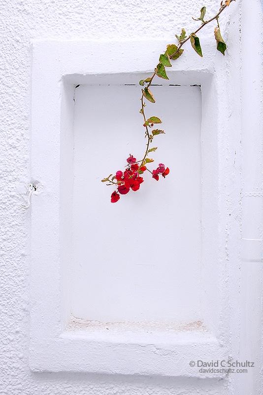 Oia, Santorini, Greece - Image #202-109
