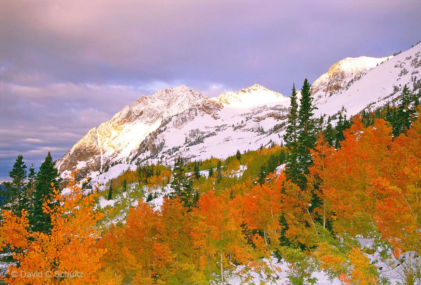 Little Cottonwood Canyon, UT - Image #68-3586