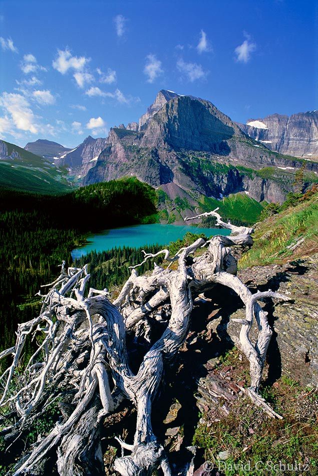 Glacier National Park, MT - Image #43-366