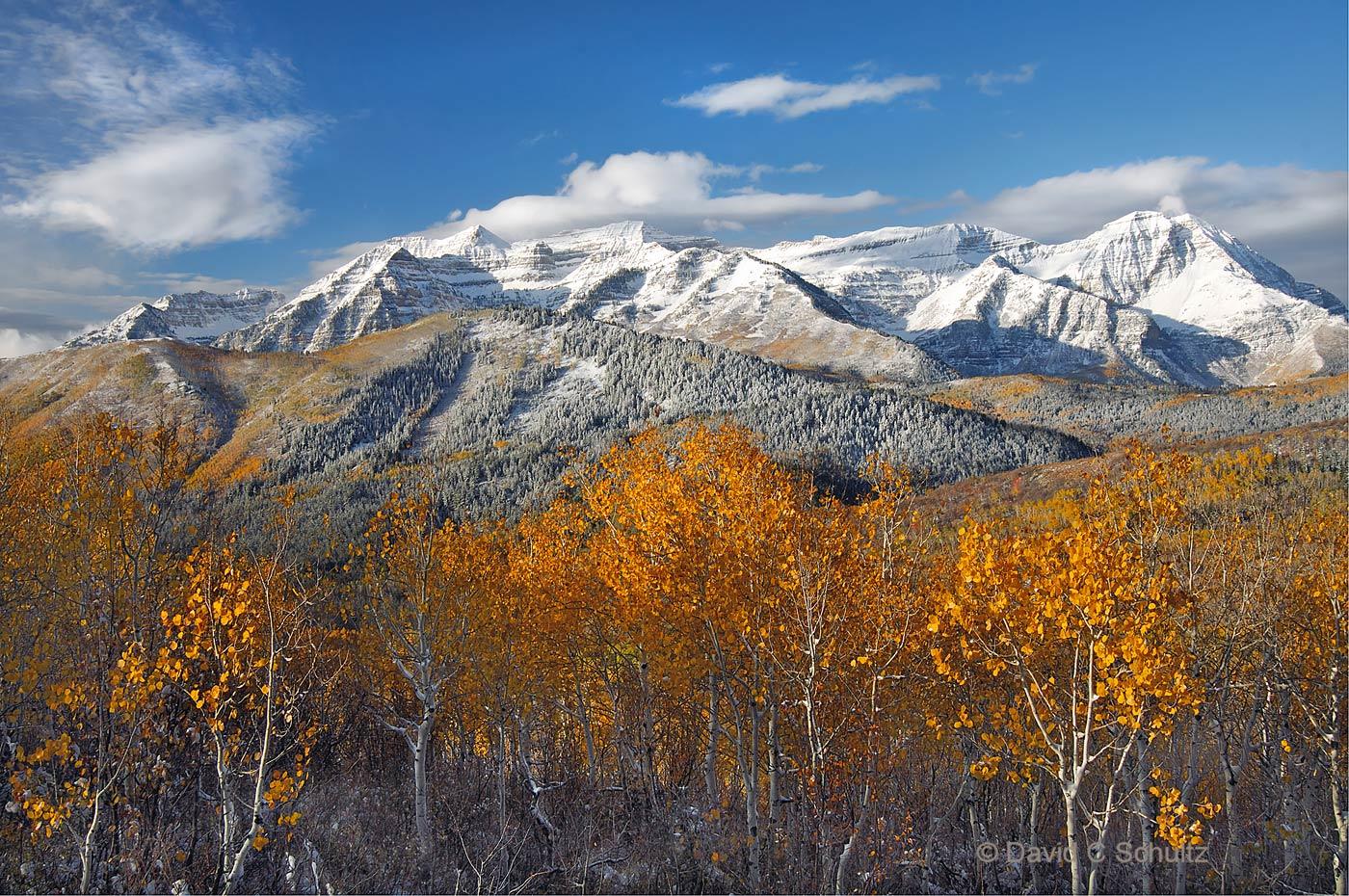 Autumn, Mount Timpanogos, UT - Image #148-1047