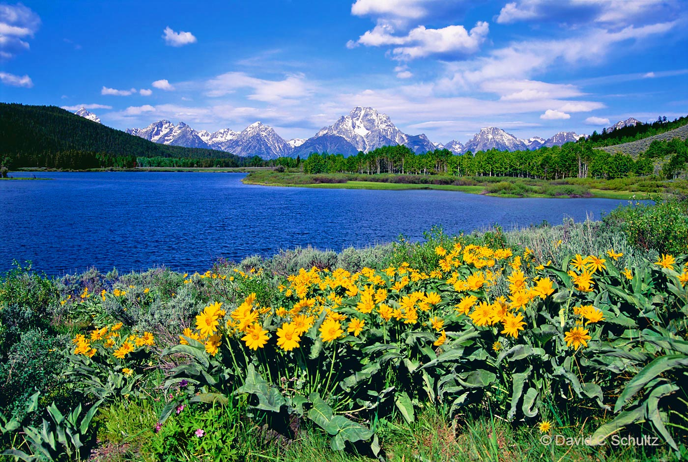 Teton National Park, WY - Image #44-1309