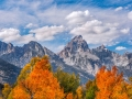 Autumn-Grand Teton National Park, WY- Image #44-4808