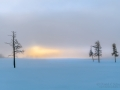 Sunrise in Yellowstone - Image #106-4403