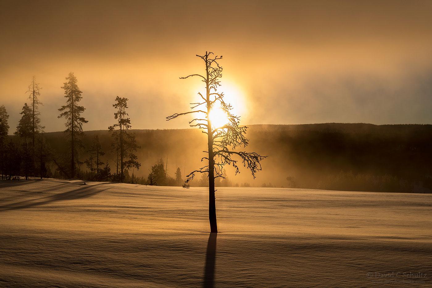 Terrace Springs sunrise - Image #106-4666