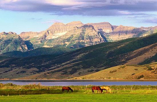 Mount Timpanogos, Deer Creek, Utah