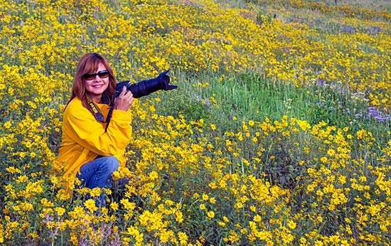 Wasatch Wildflowers and Wildlife Photography Tour