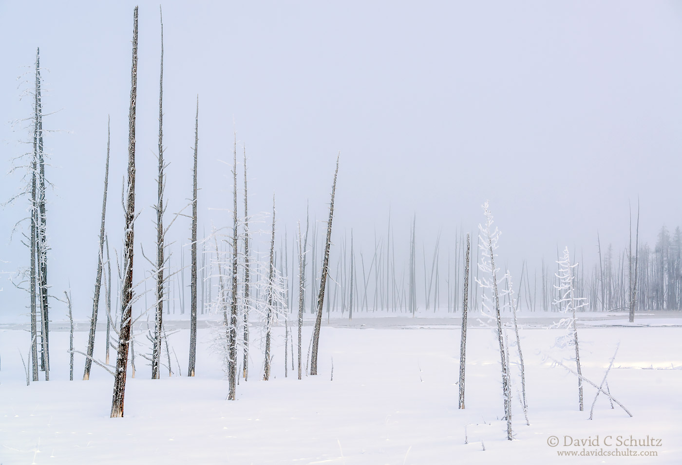 winter-yellowstone-national-park-106-2195