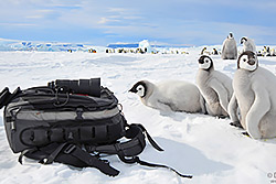 Antarctica Photography Camera Gear