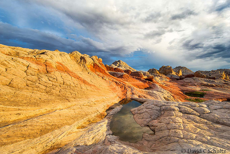 Private photography tours including White Pockets Vermilion Cliffs National Monument