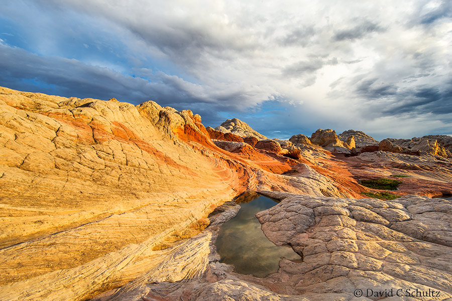 The White Pockets region of Paria Vermilion Cliffs National Monument, Arizona
