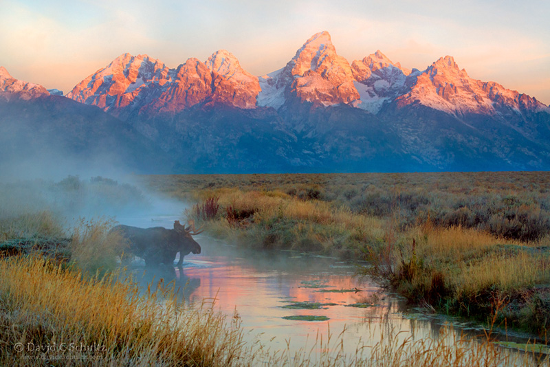 Fall Grand Teton Photo Tour 2015