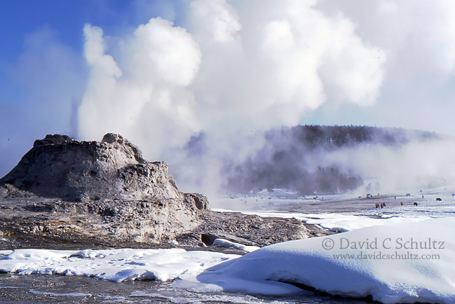 Yellowstone Photo Tours Winter 2015