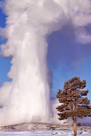 Old Faithful Yellowstone winter