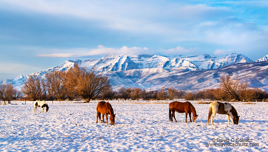 Park City, Utah photography lessons in the Heber Valley