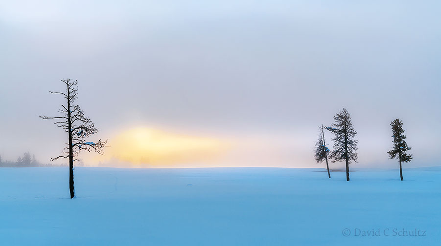 Winter landscapes of Yellowstone National Park