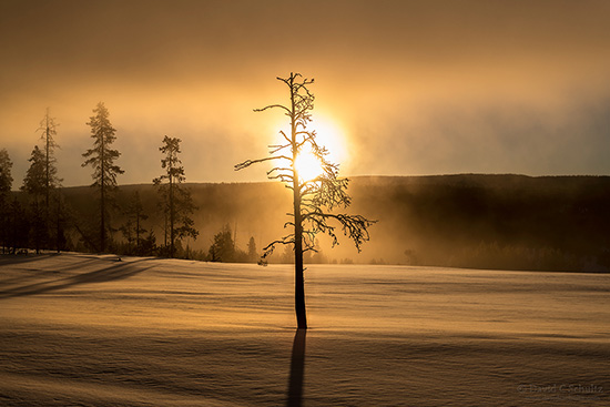 Sunrise at Terrace Spring in Yellowstone National Park in winter